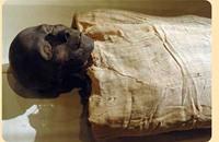 """مصر.. اكتشاف هيكل عظمي للكاهن الفرعوني """"نفر إير كارع"""""""