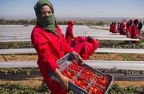 البنك الدولي يطلق مبادرة خاصة بالنساء في المغرب