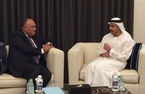 وزيرا خارجية مصر والإمارات يبحثان القضايا الإقليمية بالقاهرة