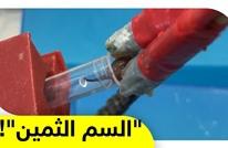 سم العقارب.. من مادة مميتة إلى عنصر نادر ينقذ آلاف المرضى