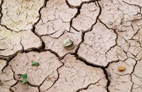 أوروبا تمر بأشد موجات الجفاف تطرفا منذ ألفي عام