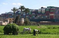 سفن حيوانات عالقة بالسويس وشركات تستنجد بأمريكا خشية القرصنة