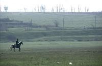 الغاغوز يسعون إلى حماية تربية الخيول (فيديو)