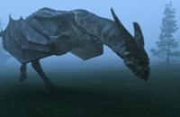 اكتشاف حفرية يميط اللثام عن نشوء الزواحف الطائرة