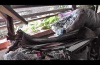 أوراق شجر الموز.. بصمة مختلفة في عالم الموضة بالكاميرون (فيديو)