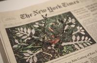 ياباني يحول الورق المستعمل إلى أعمال فنية تحاكي الطبيعة