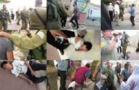 مستوطنون يعتدون على عائلة فلسطينية بحماية الاحتلال (فيديو)