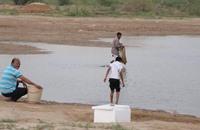 مطاعم في جدة تشتري سمكا من بحيرة مليئة بالمجاري