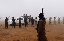 تحذيرات من حرب أهلية في سيناء مع استعانة النظام بالقبائل