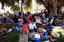 لماذا تراجعت مظاهر الاحتفال لدى المصريين بأعياد الربيع؟