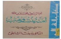 سيدة الأمهات آمنة بنت وهب.. تأملات في سيرة رسول الإسلام