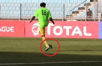 لاعب كونغولي يركل طائرا في تصرف لا إنساني (فيديو)