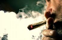 """حكم قضائي إيطالي يسمح بزراعة """"الماريجوانا"""" في المنازل"""
