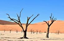 علماء: مستقبل مروع لكوكبنا بسبب التغير المناخي