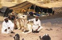 البدو الرحل جنوبي اليمن.. حياة بسيطة بظروف قاسية