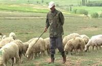 الزراعة تعاني من تباطؤ الاقتصاد عشية الانتخابات التركية