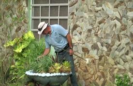 تكثيف الجهود لمكافحة فيروس زيكا في ميامي بوابة الولايات المتحدة