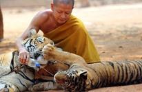 تفاصيل فضيحة حديقة معبد النمور البوذي وتجارة المليارات