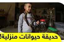 فلسطيني يحول منزله إلى حديقة حيوان لمساعدة الأطفال ومرضى التوحد