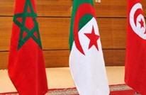 مسارات الإسلام السياسي في المغرب والجزائر وتونس