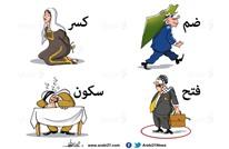 مخطط الضم..