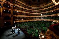 النباتات تحضر حفلا موسيقيا بدلا من البشر في برشلونة
