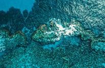 مشروع عالمي يحرز تقدما كبيرا في رسم خرائط قاع المحيط