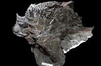 الكشف عن صور الوجبة الأخيرة لديناصور مات قبل 110 مليون عام
