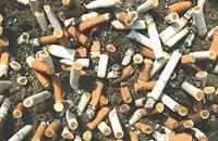 5 تريليونات من أعقاب السجائر تلوث البيئة سنويا