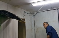 مليونا مشاهدة لمعركة مثيرة بين فلسطيني وثعبان ضخم (شاهد)