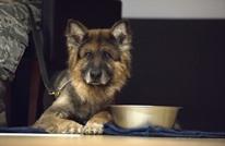 """احتفال عسكري أمريكي لـ""""كلب"""" في قاعدة إنجرليك (صور)"""