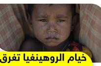 """""""الروهينغيا"""".. لماذا يعجز مجلس الأمن عن حل أزمة أكثر الأقليات اضطهادا؟"""