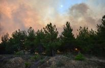 """اندلاع حرائق ضخمة بغابات """"غاليبولي"""" التاريخية بتركيا"""