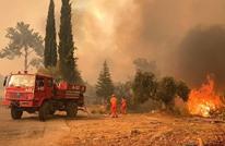 ارتفاع عدد قتلى حرائق الغابات بتركيا.. وأردوغان يعلق (شاهد)