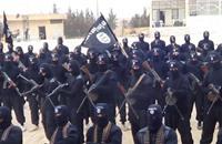 خبير إيراني: حرب داعش قاسم مشترك بين الرياض وطهران