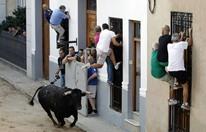 سباقات الثيران الهائجة شغف فتاك في إسبانيا