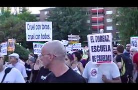 مظاهرة مناهضة لمهرجان مصارعة الثيران في إسبانيا