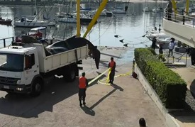 انتشال حوت أحدب طوله ثمانية أمتار من مرفأ بوثيو في مونتيفيديو