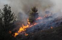 اعتقال 6 أشخاص لتورطهم في إشعال حرائق بغابات تونس
