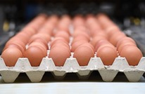 دراسة: يمكن استخدام قشور البيض لإعادة بناء العظام والأسنان