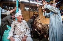 كيف وصف معارضون مصريون العيد خارج وطنهم بعد 5 أعوام؟
