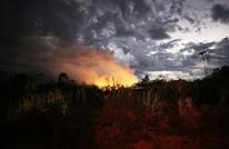 لماذا لا يمكن استرداد الأمازون بمجرد اختفائها؟