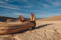 وادي الموت يسجل أعلى درجة حرارة بالعالم منذ 100 عام