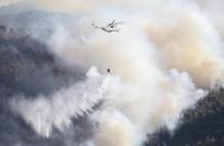 حرائق متواصلة حول العالم وخسائر هائلة في الغابات (صور)