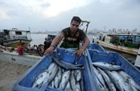 """الاحتلال يقرر توسيع مساحة الصيد بغزة ضمن تفاهمات """"التهدئة"""""""