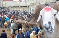 عيد الأضحى بالمغرب.. تقاليد راسخة ومهن موسمية (صور)