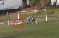 كلب يقتحم الملعب ويتقمص دور الحارس بتصديه للكرة (فيديو)