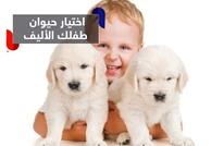 كيف تختار الحيوان الأليف المناسب لطفلك؟