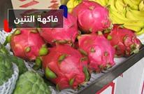 تكافح الشيخوخة والسرطان وتقوي النظر.. هل تعرف ما هي فاكهة التنين؟