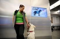 مطار هلسنكي يستخدم الكلاب للكشف عن كورونا